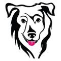 Wise Walker USA Logo