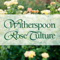 Witherspoon Rose USA Logo