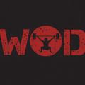 WOD Armour India Logo