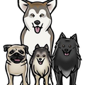 Woof Pack Online Coupons and Promo Codes