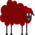 Woolwinders Logo