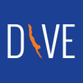 Dive Sportswear & Swimwear Logo
