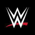 WWE USA Logo