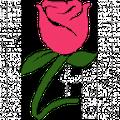 Zflowers Logo