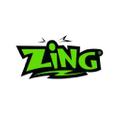 Zing.Store Logo